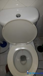clear-toilet-bowl-choke-plumber-singapore-tulip-garden-1