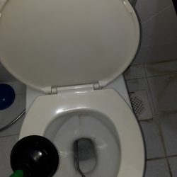 clear-toilet-bowl-choke-plumber-singapore-tulip-garden-2