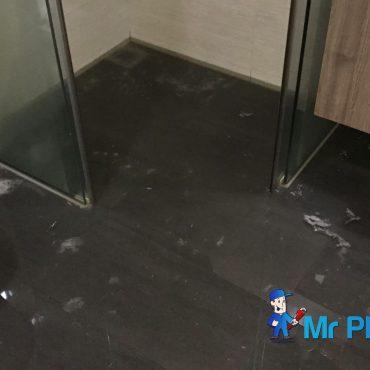 clogged-toilet-repair-plumber-singapore-2_wm.jpg