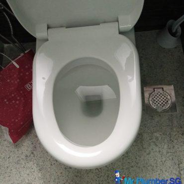 toilet-bowl-choke-plumber-singapore_wm.jpg