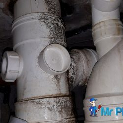 Clear-Floor-trap-&-Drainage-pipe-Choke-plumber-singapore-HDB-Boon-Lay-8