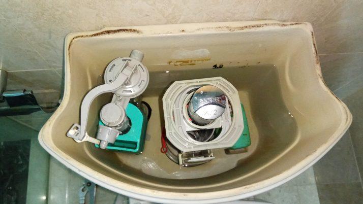 Toilet Flush System Replacement Plumber Singapore Condo Lavender