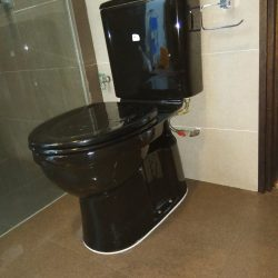 New-Toilet-Bowl-Installation-Plumber-Singapore-Condo-Yishun-7