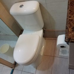 Toilet-Bowl-Replacement-Plumber-Singapore-HDB-Redhill-6