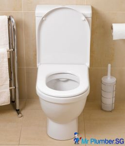 Unclog-Toilet-Bowl-Mr-Plumber-Singapore_wm