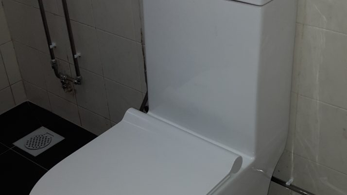 Toilet Bowl Replacement Plumber Singapore Landed, Upper Serangoon