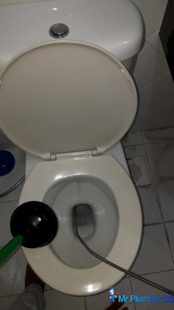 Clear Toilet Bowl Choke Plumber Singapore Tulip Garden
