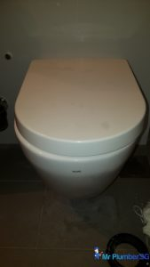Toilet-bowl-drainage-pipe-repair-plumber-singapore-HDB-Dover-4