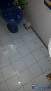clear-toilet-floor-trap-drainage-pipe-choke-plumb (1)