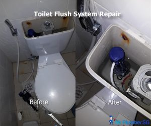 Toilet-flush-system-repair-Mr-Plumber-Singapore_wm