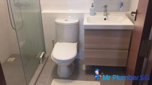 change-toilet-bowl-installation-plumber-singapore_wm