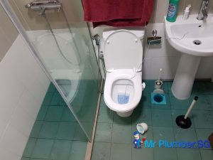 clogged-toilet-repair-plumber-singapore_wm