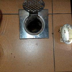Clear-Floor-trap-&-Drainage-pipe-Choke-plumber-singapore-HDB-Boon-Lay-14