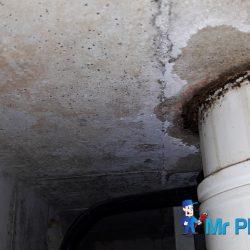 Clear-Floor-trap-&-Drainage-pipe-Choke-plumber-singapore-HDB-Boon-Lay-5