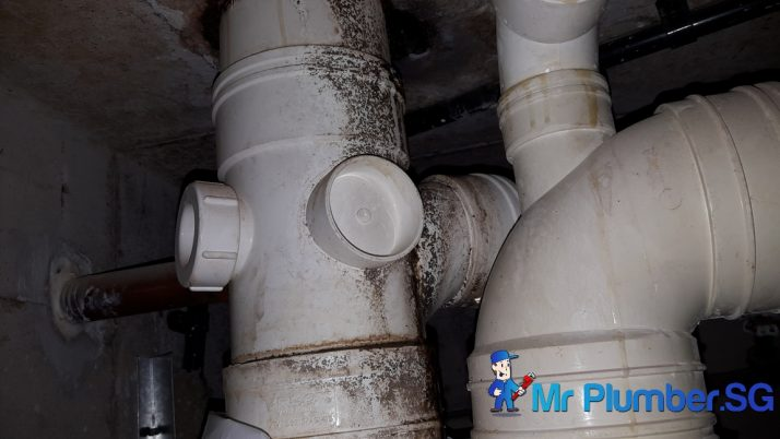 Clear Floor Trap & Drainage Pipe Choke Plumber Singapore HDB Boon Lay