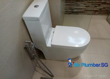 Installation Of New Toilet Bowl Plumber Singapore Condo Tiong Bahru