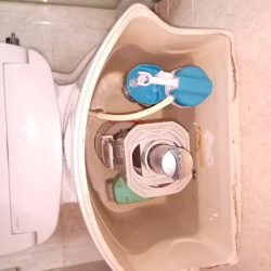 Toilet-Flush-System-Replacement-Plumber-Singapore-Condo-Lavender-3