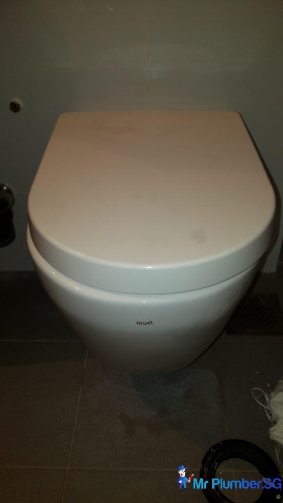 Toilet Bowl Drainage Pipe Repair Plumber Singapore Hdb