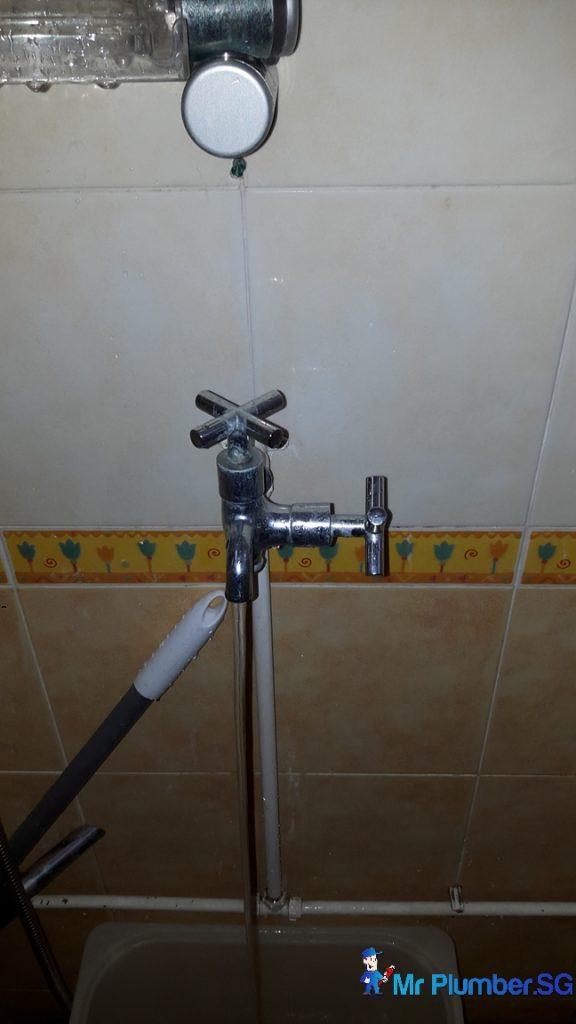 Fix Shower Tap Amp Repair Toilet Cistern Flush Push Button