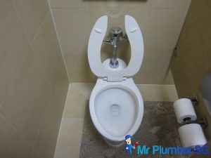 First-Generation-toilet-bowl-causing-toilet-bowl-choke-Mr-Plumber-Singapore_wm
