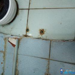 Toilet-Bowl-Replacement-Plumber-Singapore-HDB-Bedok-3