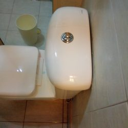 Toilet-Bowl-Replacement-Plumber-Singapore-HDB-Redhill-7