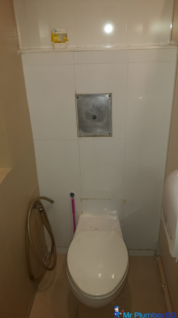 Pubilc Toilet Flush System Replacement Plumber Singapore Toa Payoh