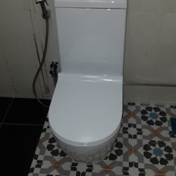 Toilet-Bowl-Replacement-Plumber-Singapore-Landed-Upper-Serangoon-6_wm