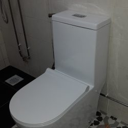 Toilet-Bowl-Replacement-Plumber-Singapore-Landed-Upper-Serangoon-7_wm