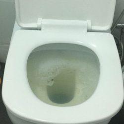 Clear-Drainage-Toilet-Pipe-Choke-Plumber-Singapore-HDB-Bukit-Panjang-1