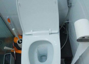 Clear Drainage Toilet Pipe Choke Plumber Singapore HDB Bukit Panjang