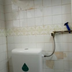 Squat-toilet-flush-system-replacement-Mr-Plumber-Singapore-3_wm