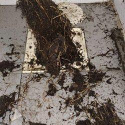 clear floor trap choke mr plumber singapore condo bedok 1