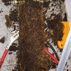 clear floor trap choke mr plumber singapore condo bedok 2