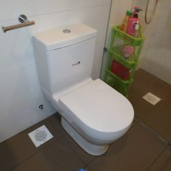 replace toilet pan collar mr plumber singapore landed bukit merah 1