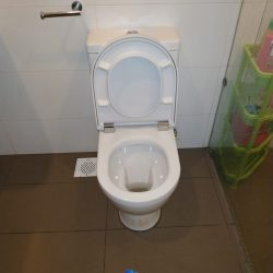 replace toilet pan collar mr plumber singapore landed bukit merah 2