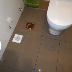 replace toilet pan collar mr plumber singapore landed bukit merah 6