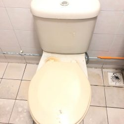 toilet-bowl-replacement-mr-plumber-singapore-hdb-choa-chu-kang-crescent-4_wm