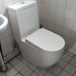 toilet-bowl-replacement-toilet-bowl-installation-plumber-singapore-hdb-woodlands-2