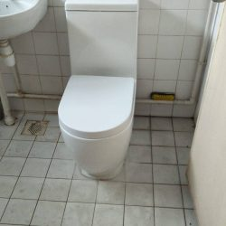 toilet-bowl-replacement-toilet-bowl-installation-plumber-singapore-hdb-woodlands-3