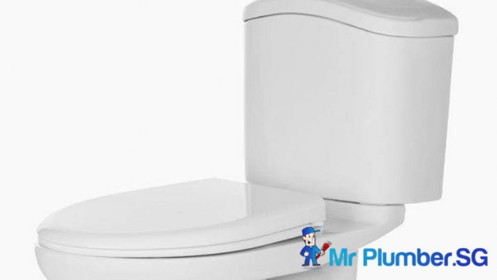 Top 3 Best-selling Toilet Brands for Toilet Bowl Installation