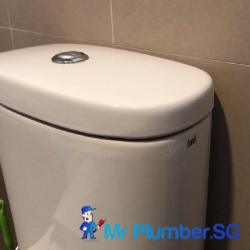 flush-system-replacement-plumber-singapore-hdb-sengkang-3