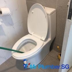 clear-toilet-bowl-choke-plumber-singapore-condo-thomson-1