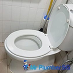 toilet-bowl-replacement-toilet-bowl-services-plumber-singapore-hdb-tampines-4