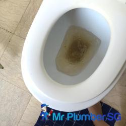 toilet-choke-unclog-toilet-bowl-choke-services-plumber-singapore-condo-toa-payoh-2_wm