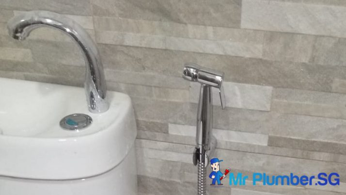 How Can Buying And Installing A Bidet Spray Help Save You Money